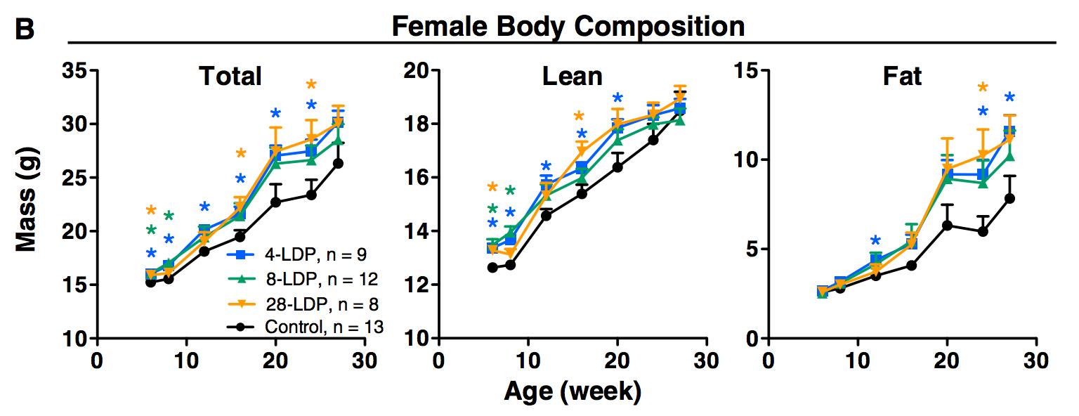 生命早期抗生素对肥胖影响的图表。