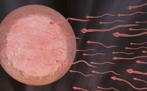 男性怎样知道自己的精子健康不