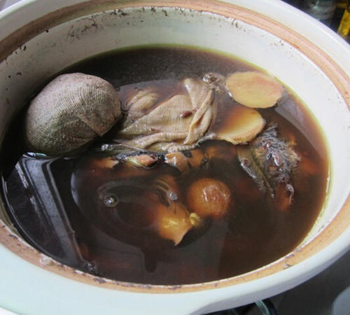 绵茵陈鲫鱼汤