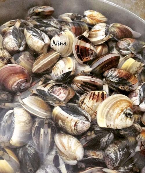 鲜奶芝士蛤蜊汤
