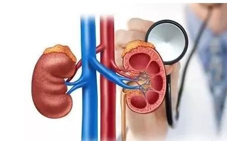 男人为何出现血尿 是什么原因导致的?